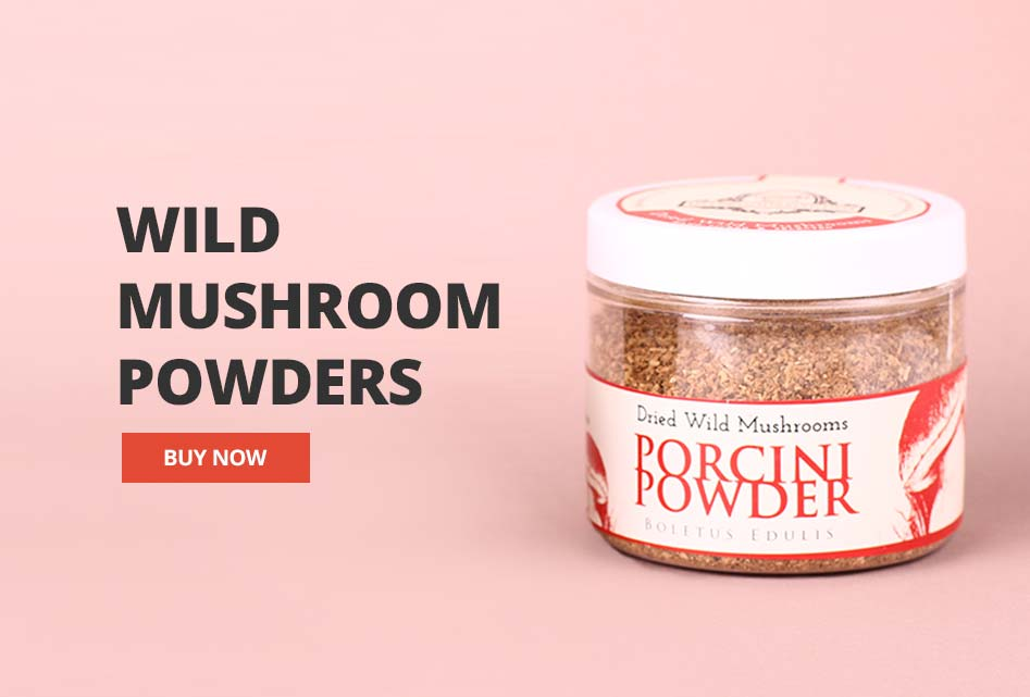 Wild Mushrooms Powder UK