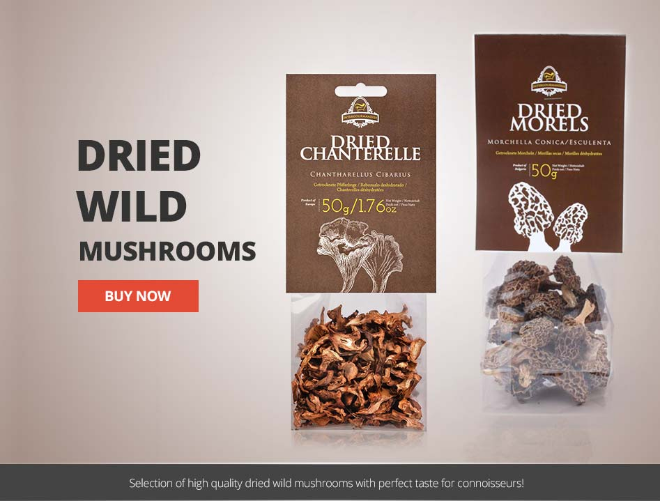 Dried Wild Mushrooms in UK